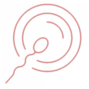 sperm egg icon